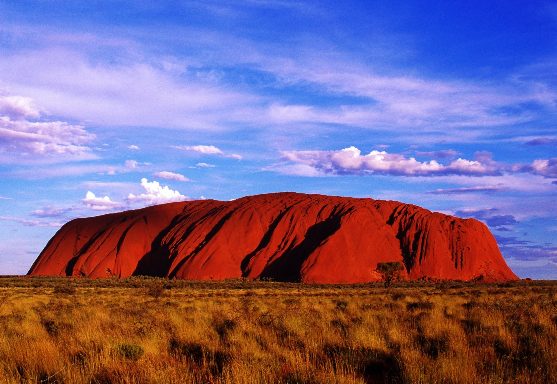 alice springs day tours to uluru darwin tourism town. Black Bedroom Furniture Sets. Home Design Ideas